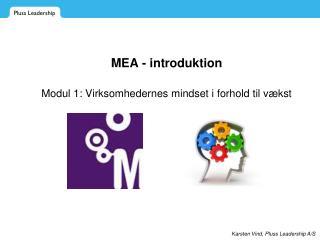 MEA - introduktion Modul 1: Virksomhedernes mindset i forhold til v�kst