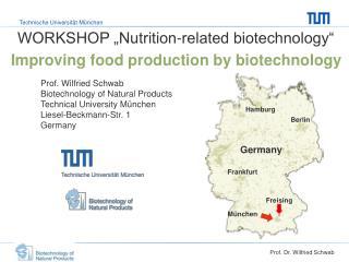 Prof. Dr. Wilfried Schwab