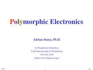 P o l y morphic Electronics