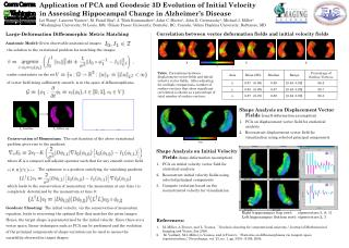 Shape Analysis on Initial Velocity Fields  (large-deformation assumption)