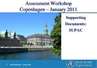 Assessment Workshop Copenhagen   January 2011