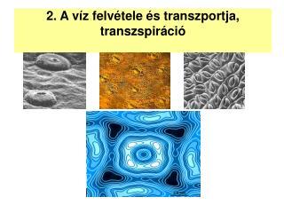 2. A víz felvétele és transzportja, transzspiráció