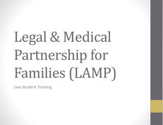 Legal & Medical Partnership for Families (LAMP)