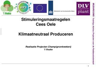 Realisatie Projecten Champignonkwekerij  't Voske