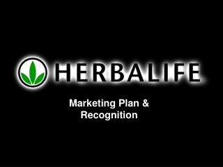 Marketing Plan & Recognition