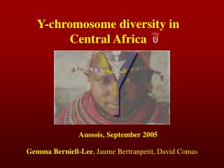 Y-chromosome diversity in Central Africa