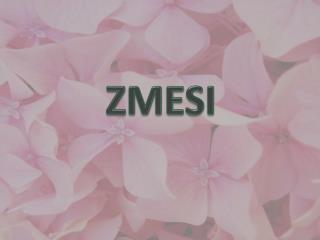 ZMESI
