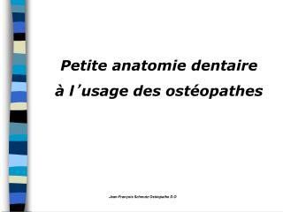 Petite anatomie dentaire  à l ' usage des ostéopathes