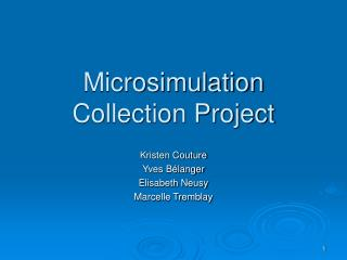Microsimulation Collection Project