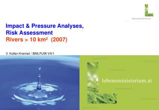 Impact & Pressure Analyses,  Risk Assessment  Rivers > 10 km²  (2007)