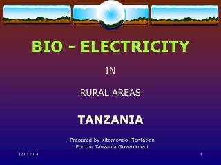 BIO - ELECTRICITY  IN   RURAL AREAS   TANZANIA