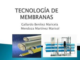TECNOLOG�A DE MEMBRANAS