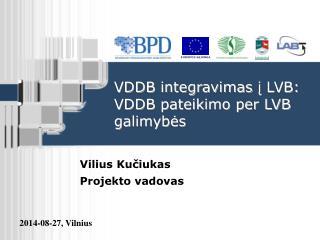 VDDB integravimas  į LVB: VDDB pateikimo per LVB galimybės