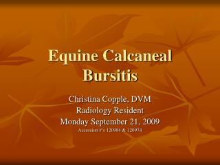 Equine Calcaneal Bursitis