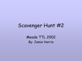 Scavenger Hunt #2