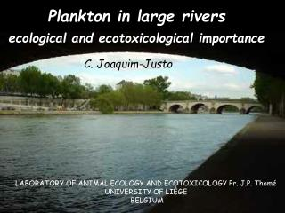 Plankton in large rivers  ecological and ecotoxicological importance