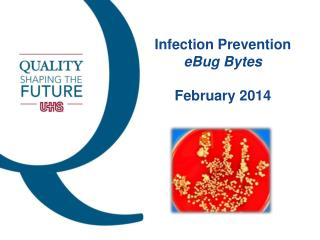 Infection Prevention eBug  Bytes February 2014