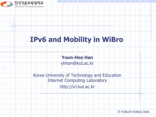 IPv6 and Mobility in WiBro