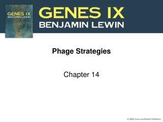 Phage Strategies