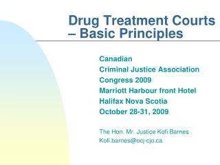 Drug Treatment Courts – Basic Principles