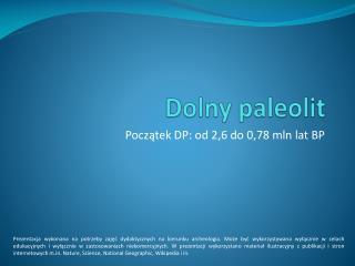 Dolny paleolit