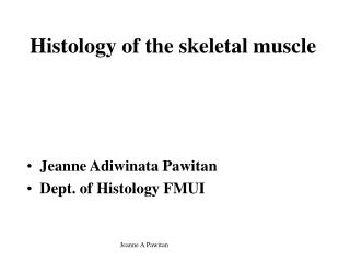 Histology of the skeletal muscle