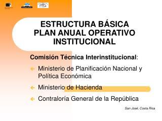 ESTRUCTURA BÁSICA  PLAN ANUAL OPERATIVO INSTITUCIONAL