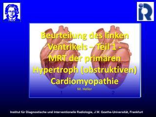 Beurteilung des linken Ventrikels   Teil 1 - MRT der prim ren Hypertroph obstruktiven Cardiomyopathie M. Heller
