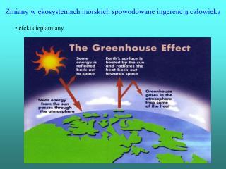 Zmiany w ekosystemach morskich spowodowane ingerencj? cz?owieka
