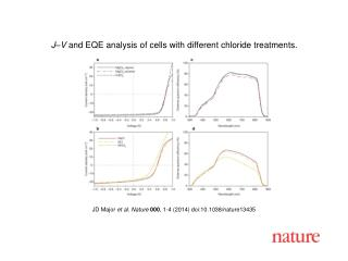 JD Major  et al.  Nature  000 ,  1 - 4  (2014) doi:10.1038/nature 13435