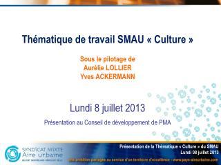Thématique de travail SMAU «Culture» Sous le pilotage de Aurélie LOLLIER Yves ACKERMANN