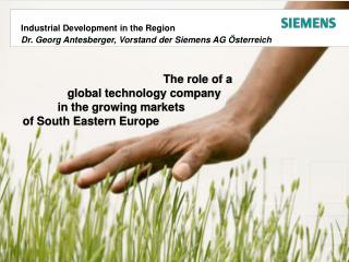 The role of a     global technology company	 in the growing markets		 of South Eastern Europe