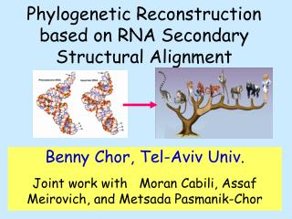 Phylogenetic Reconstruction based on RNA Secondary Structural Alignment