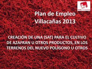 Plan de Empleo Villacañas  2013