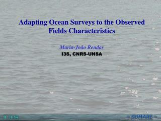 Adapting Ocean Surveys to the Observed Fields Characteristics