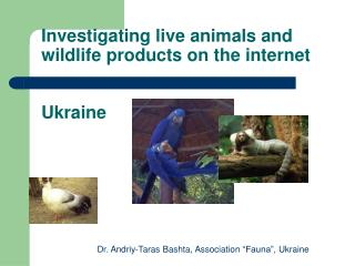 Investigating live animals and wildlife products on the internet Ukraine