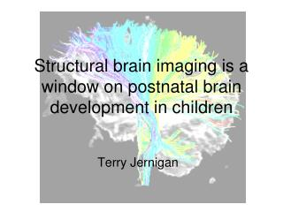 Structural brain imaging is a window on postnatal brain development in children