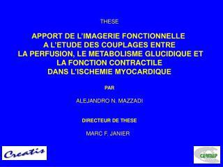 THESE  APPORT DE L IMAGERIE FONCTIONNELLE  A L ETUDE DES COUPLAGES ENTRE  LA PERFUSION, LE METABOLISME GLUCIDIQUE ET  LA