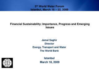 Financial Sustainability: Importance, Progress and Emerging Issues