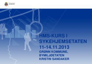 HMS-kurs  i SYKEHJEMSETATEN 11-14.11.2013 grønn kommune, Bymiljøetaten Kristin Sandaker