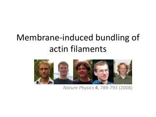 Membrane-induced bundling of actin filaments