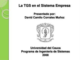 La TGS en el Sistema Empresa