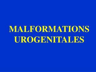 MALFORMATIONS UROGENITALES