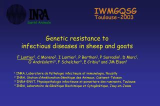 Genetic resistance to  infectious diseases in sheep and goats
