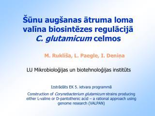 Šūnu augšanas ātruma loma valīna biosintēzes regulācijā  C. glutamicum  celmos