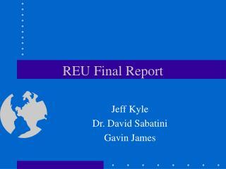 REU Final Report