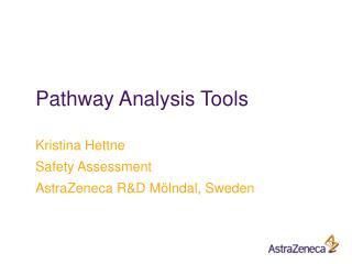 Pathway Analysis Tools