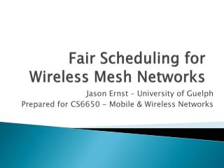 Fair Scheduling for Wireless Mesh Networks