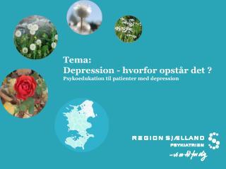 Tema: Depression - hvorfor opstår det ? Psykoedukation til patienter med depression