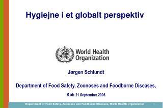 Hygiejne i et globalt perspektiv